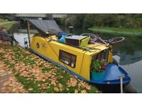 20' Springer Narrowboat