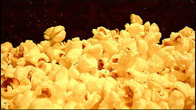 4 oz GARLIC BUTTER POPCORN SEASONING -