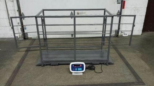 Livestock Vet scale Veterinary Scale Hog Scale, Sheep Scale and Goat Scale