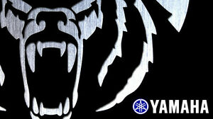 *ATTENTION* YAMAHA ATV OWNERS