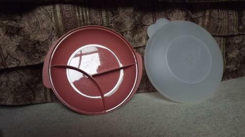 Divided Plate With Lid Ebay