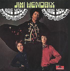 LP gebruikt - The Jimi Hendrix Experience - Are You Experi..
