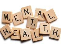 Mental Health First Aid Adults who Interact with Youth