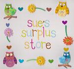 Sue's Surplus Store