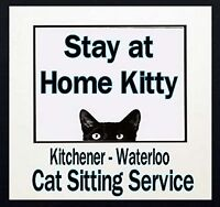 LOOKING FOR A CAT SITTER?