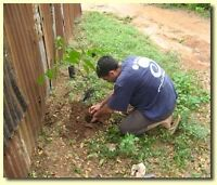 Developing an educational garden in Kpalime, Togo