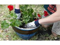 Gardener available in West London Hayes Area