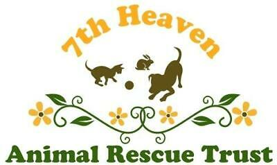 7th Heaven Animal Rescue Trust