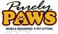 Purely Paws is looking to add to our team.