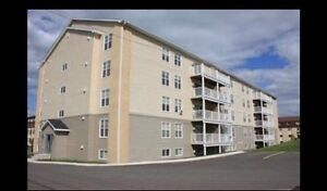 Available DEC 1st - 3 bedroom call or text 506.476.7355