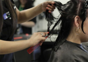 BUSINESS REGISTRATION  COSMETOLOGY SCHOOL FOR SALE
