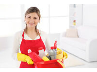 Domestic cleaner excellent package