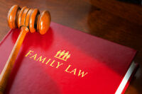 Family Divorce Lawyer - Separation Custody Child Spousal Support
