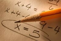 An experienced female math tutor will move up your grades!