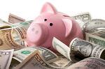 Lee's Piggy Bank