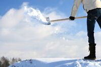 Earn $20-40 clearing driveways! Shovelling or Snowblowing