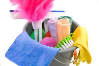 Cleaning Lady/Organizer