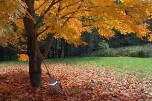 Full serve fall clean up. Gutters, windows, lawns, siding & more London Ontario image 9