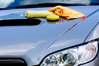 Professional Vehicle Detailer--Sarnia On.
