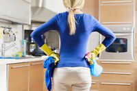 Cleaning Lady Needed For Growing Company - Great Remuneration