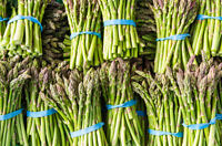 New varieties of Heirloom/Non-gmo seeds - Asparagus, Lettuce,etc