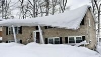 Removal of snow - roofs driveways ect