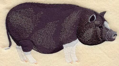 Embroidered Short-Sleeved T-shirt - Potbelly Pig A6654 Size S - XXL