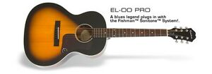 """Wanted """"Used"""" Epiphone EL-00 Pro Acoustic-Electric Guitar"""