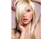 Free Hair Cut & Highlights by Senior Level Hairstylist free colour color