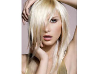 FREE HIGHLIGHTS & HAIR CUT by senior stylist with more than 5 years experience, colour haircut