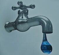 Professional and Affordable Plumbing Services