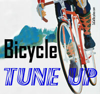 BIKE TUNE-UP**$49.99**    Top Shelf Sports on 8th St.