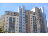 2 BED FLAT TO RENT!!!