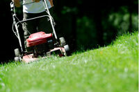 grass cutting west island - coupe de gazon 514 995 1911