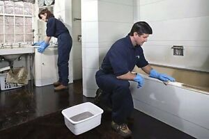 CHEAP BOND AND CARPET CLEANING Chermside Brisbane North East Preview