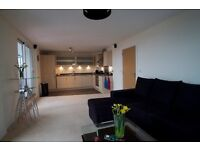 Newly refurbished luxury 2 bed 2 bath flat available now