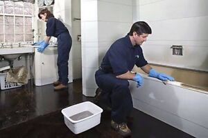 CHEAPEST BOND CLEANING BRISBANE Chermside Brisbane North East Preview