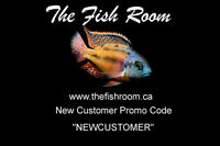 www.thefishroom.ca - Online Aquarium Supply Shop (10% off )