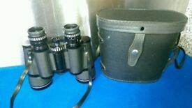 Vintage Good Condition Pathescope Binoculars with Case