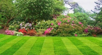 Lawn mowing  Victoria Point Redland Area Preview