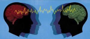 homo-sensorium seeking connection