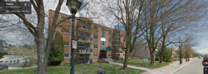 Great Downtown Burlington 1 Bedroom, Steps to the Lake