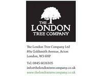 2 Tree Groundsman in West London required for small family business ,
