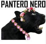 Pantero Dorato