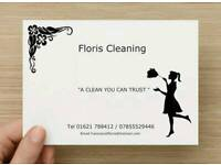 Domestic/ Office/ Commercial cleaner
