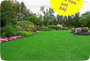 Electric lawn mowing central Claremont Nedlands Area Preview