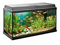 Juwel Rekord 100 liter aquarium black excellent condition