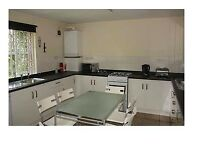 Student flat to rent NTU nottingham