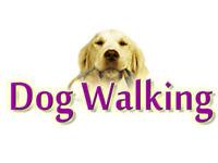 Dog Walking and Pet Minding Service