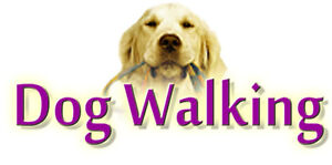 Reliable Dog Walkers - Accepting New Clients!